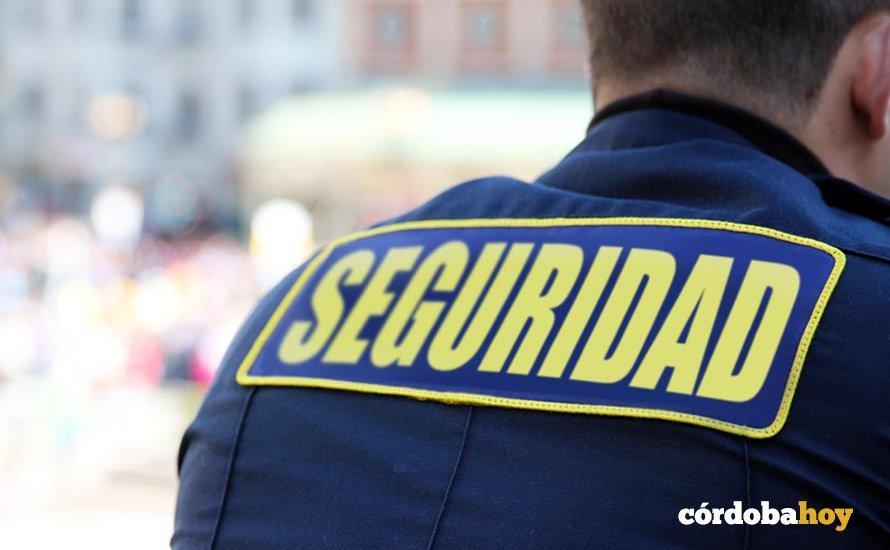 Reclaman que Seguridad Privada sea incluido en el grupo de servicios de seguridad y emergencias